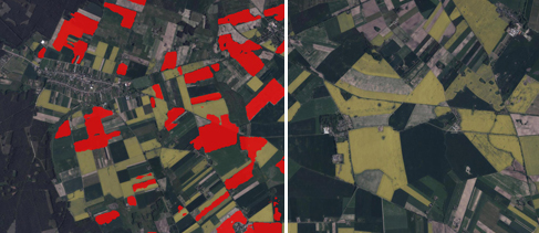 Satellite data in the winter rapeseed crops mapping